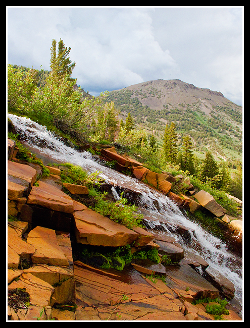 Galena Falls, Toiyabe National Forest