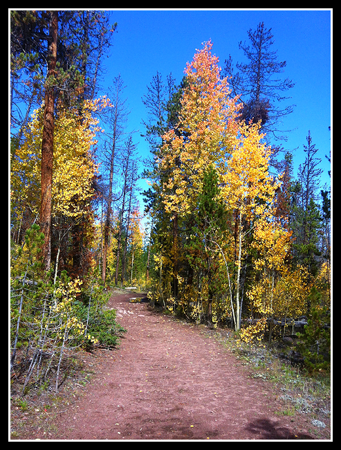 Ultimately, the highlight of my trip to Utah was seeing some early signs of fall color! (Photo: China Meadows Trail in Utah's Uinta Mountains.)